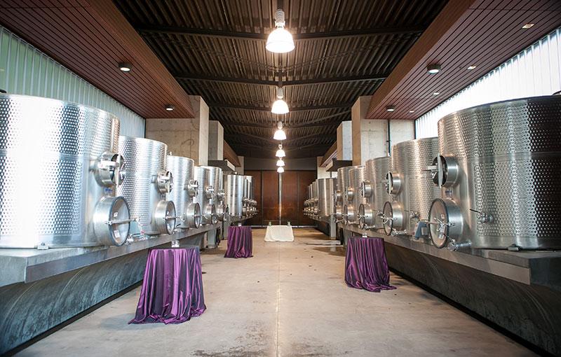 Fermentation Gallery