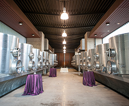 Fermentation Tank Gallery